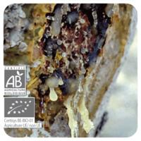 Wierook - Boswellia carteri - 5 ml